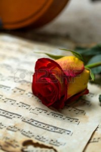 26230893-violin-sheet-music-and-rose-black-composition-still-life-music